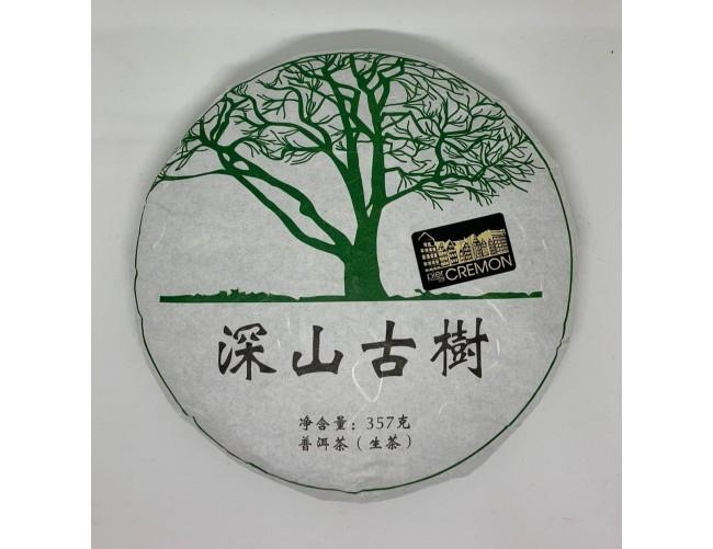 Шен Пуер - Гірські дерева